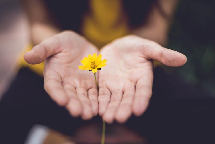花を差し出す女性